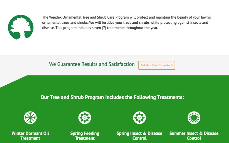 Weedex Lawn Care service page